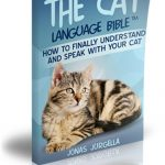 Cat Language Bible